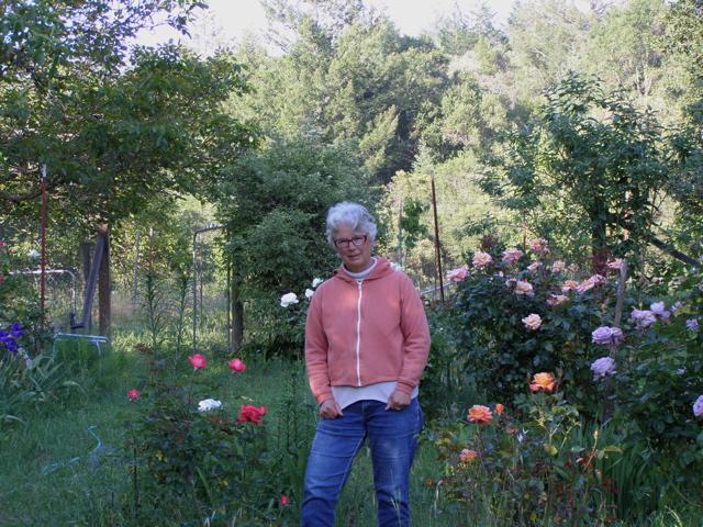 humanities Judy Helfand